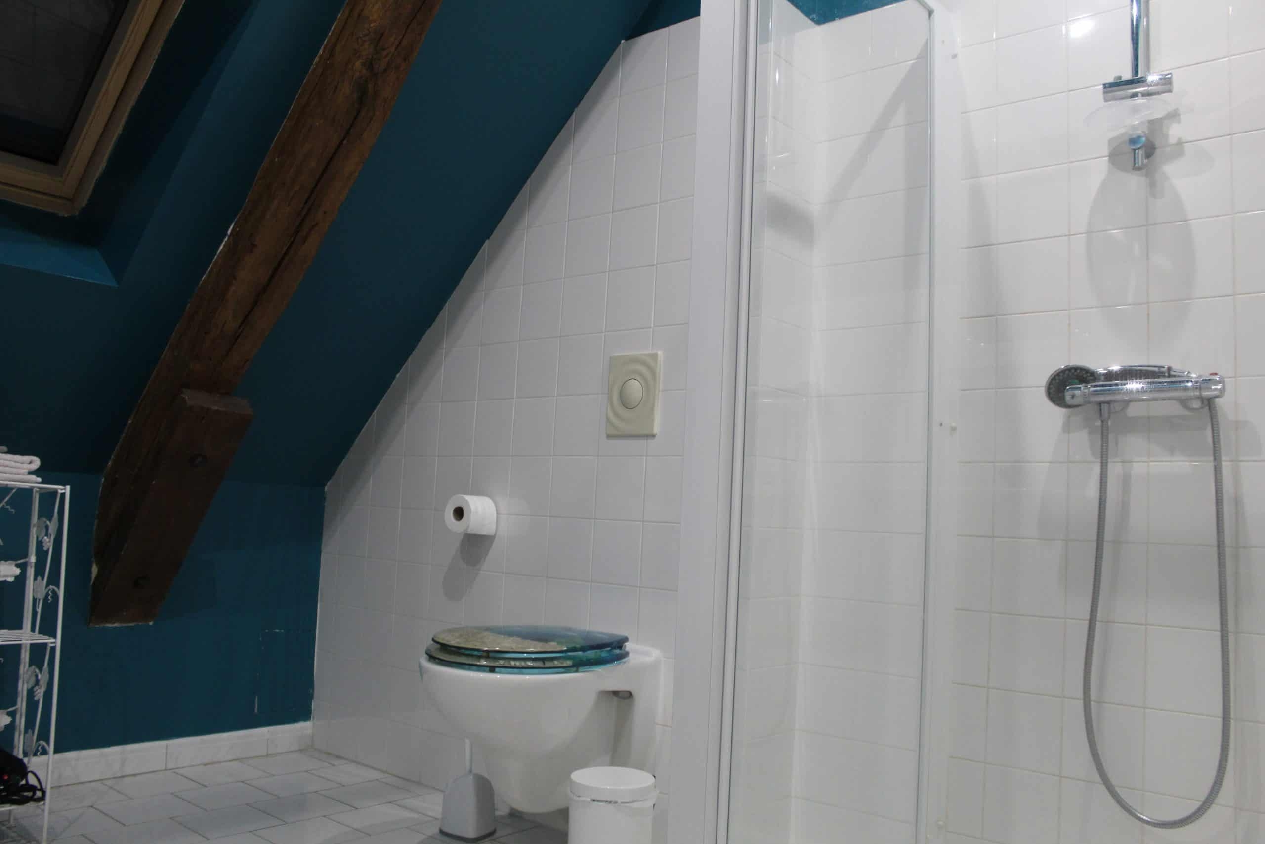 Salle de bain chambre Du Bellay, chambres d'hôtes La Ferme du Grand Launay, à Semblançay